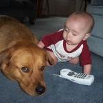 犬は新しく生まれた赤ちゃんに嫉妬をするの!?