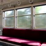 猫と一緒に電車でお出かけ! 連れて移動をするときのポイント